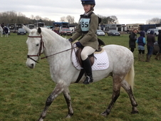 Registered 14. 1hh Connemara pony