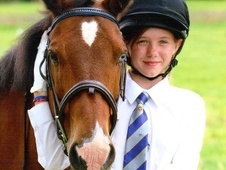 Pony Club Ponies horse - 16 yrs 13.3 hh Bay - Cambridgeshire