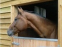 A Fresh Approach To Equestrian Construction... - Leicestershire