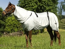 Equi-Theme Sweet Itch / Fly Rug - Oxfordshire