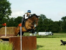 Fabulous Riding Club All Rounder