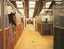 Part Livery, East Sussex, EXCELLENT FACILITIES - West Sussex