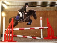 All Rounder horse - 12 yrs 13.2 hh Black - Bedfordshire