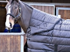 Shires Tempest 200g Under Combo Stable Rug  [Sizes: 5'6