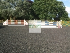 Equestrian Surfaces and Aggregates