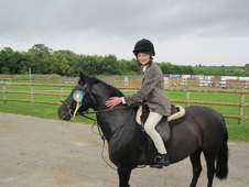 Super Jumper 12. 1hh All-rounder
