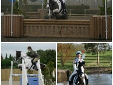 14. 2 fantastic all-rounder for sale