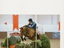 Competition New Forest Pony - Huge Jump