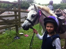 Handsome 11. 2hh Lead Rein Pony
