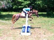 Fun, Athletic Event/Jumper Pony