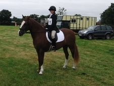 14. 2hh Uncomplicated, Capable and Safe Schoolmistress