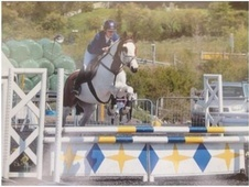 All Rounder horse - 11 yrs 15.2 hh Skewbald - Surrey
