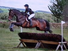 Stunning allrounder, ready to compete now