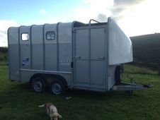 Ifor Williams 610 Horse Trailer