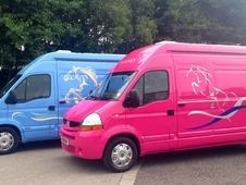 NEW BUILD 3. 5T Horsebox - you choose the colour