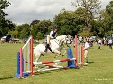 Talented jumping pony