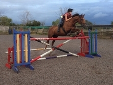 Pretty 16.1hh chestnut mare th mare