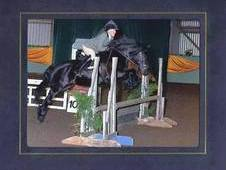 SOLD*GREENHOLME BELLA* - VERSATILE PONY IN A MILLION -