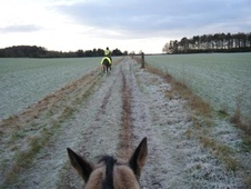 rider wanted - Buckinghamshire