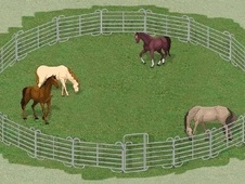Texas Round Pen – 12 meters diameter € 1.159 - East Sussex