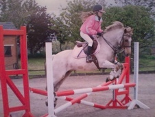 All Rounder horse - 15 yrs 1 mth 12.2 hh Strawberry Roan - Warwic...