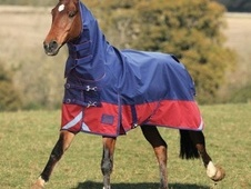 Shires Highlander Lite Combo Turnout Rug (New Design For 2013)  -...