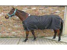 Equine Superstore Medium 600D  - UK