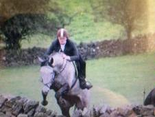 16'3hh Steel Grey Gelding. 7yrs Hunter / Eventer With 5 Stage V...