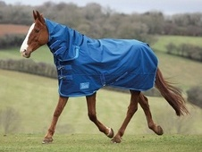 Shires Tempest Lite Combo Turnout Rug  (All Sizes) - Leicestershire