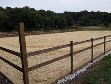full, part, grass livery offered - Surrey
