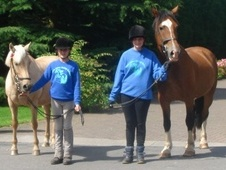Glen Jakes Horse Riding School - Cheshire