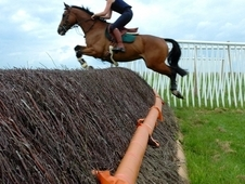 Super Allrounder/ Team Chase/ Hunt/ Point To Point