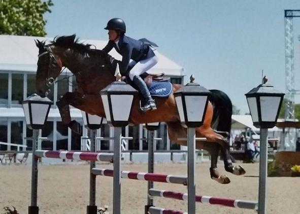SELLE FRANCIS, JUMPED UP TO 140+ LEVEL WITH 3 GOOD PACES!