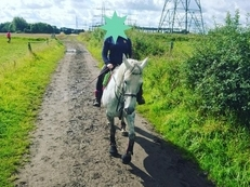 15.0hh grey mare for PART loan manchester