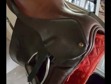 Saddle and bridle