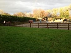 Private yard available for 2-3 ponies/horses (DIY, assisted or ex...