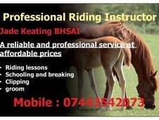 professional rider/instructor