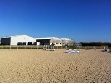 Top class livery stables - year round turnout