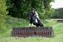 'Billy'-A Super All-rounder / Competition Pony for sale