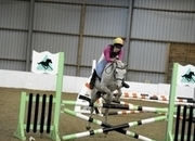 All Rounder - Mare - 13.2 hh - Norfolk