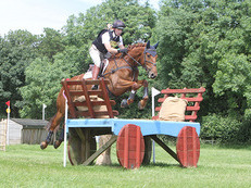 Exciting eventing prospect