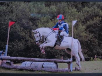 Fancy, 12.2hh 9 year old appoloosa x mare. Excellent all runder / pc pony