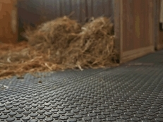 Stable Matting System