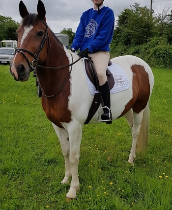 15.2hh Safe and Sensible Happy Hacker
