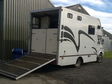 6.4t Horsebox for sale