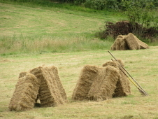 2016 HAY TOP QUALITY RYE / MEADOW GRASS £3. 50 each