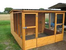 Quality timber kennels