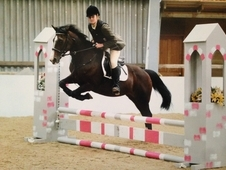 Chase, 14. 1hh all rounder