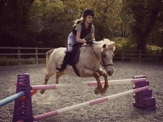 Loving Jumping/ endurance pony