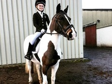 13hh head turner 6 years old